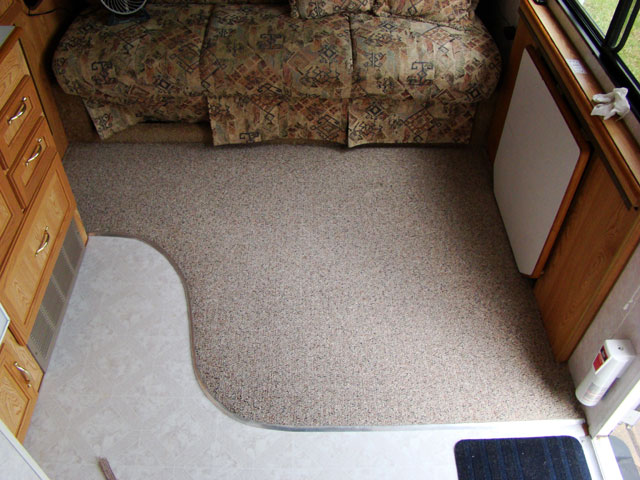 how to get dog poop stains out of berber carpet